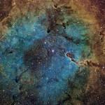 Kosmos (28)