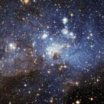 Kosmos (44)