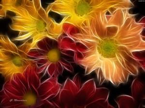 Kwiaty (36)